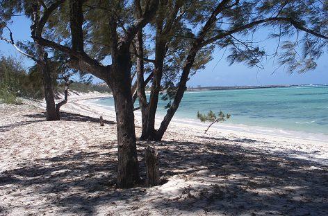 Madagascar   Offerta tour + mare maggio e giugno 2017