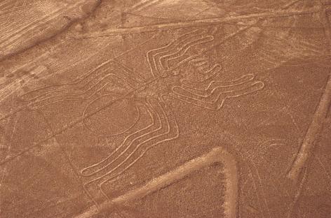 Webinar Explore Perù – Le linee di Nazca