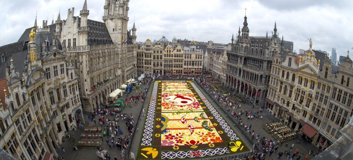 Webinar Fiandre: Gli eventi imperdibili del 2018 –  <br>Il Tappeto di fiori di Bruxelles
