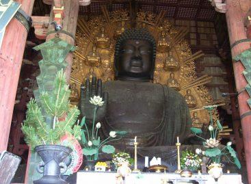Travel Experience – Konnichiwa Giappone