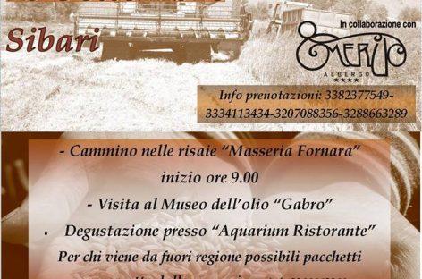 TOUR ESPERIENZIALE – Calabria