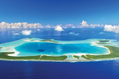 Esperta programmazione Polinesia