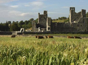 Webinar Irlanda – Scopri le Hidden Heartlands nel cuore nascosto dell'Irlanda