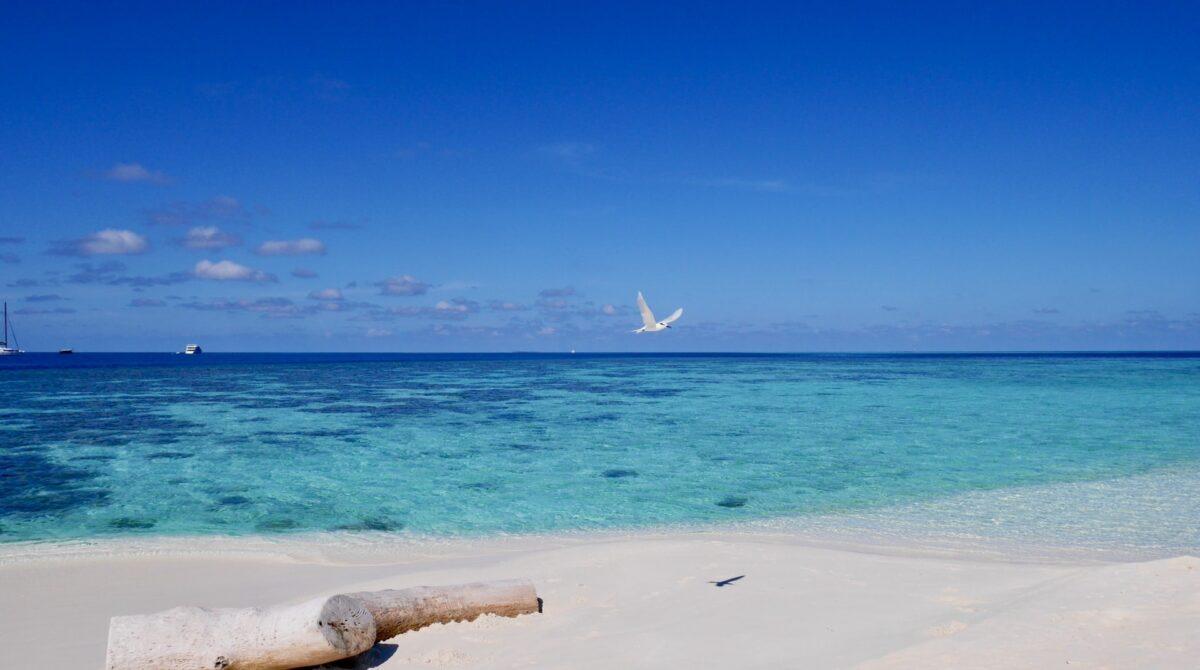 Le nostre Maldive